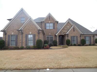 Southaven Single Family Home For Sale: 3345 John Michael Drive