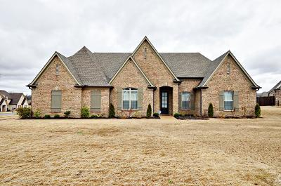 Southaven Single Family Home For Sale: 486 Sandra Alice