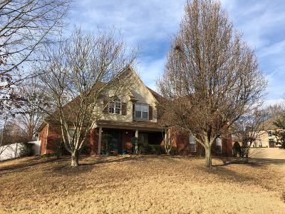 Southaven Single Family Home For Sale: 4265 Chalice Drive