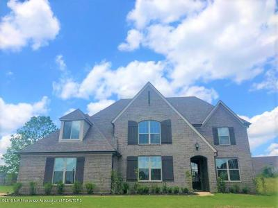 Olive Branch Single Family Home For Sale: 13195 Willow Nest Drive