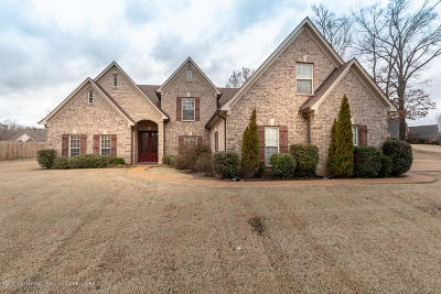 Southaven Single Family Home For Sale: 2152 Belmarie Drive