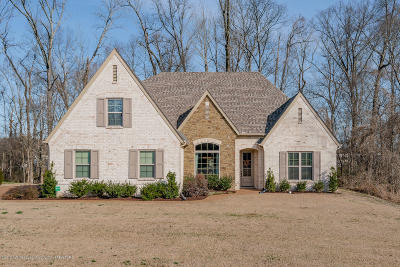 Southaven Single Family Home For Sale: 3888 Cobblewood Drive