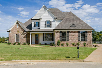 Southaven MS Single Family Home For Sale: $328,000