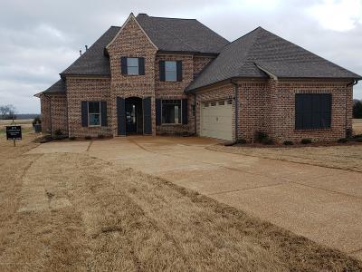 Hernando MS Single Family Home For Sale: $336,400