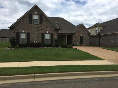 Southaven Single Family Home For Sale: 3494 Lindsey Lane