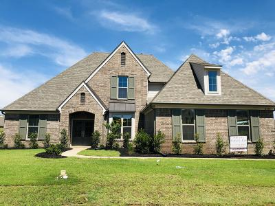 Desoto County Single Family Home For Sale: 4249 John Joseph Drive