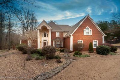 Olive Branch Single Family Home For Sale: 8072 Lakeview Drive