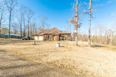 Holly Springs Single Family Home For Sale: 256 Burton Road