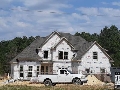 Byhalia Single Family Home For Sale: 3143 N Red Banks Road