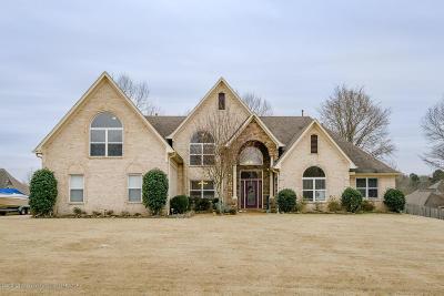Desoto County Single Family Home For Sale: 14059 Strafford Lane