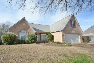 Desoto County Single Family Home For Sale: 9620 Champlain Drive