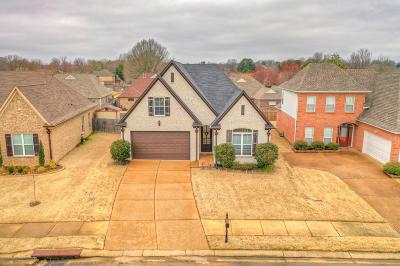 Desoto County Single Family Home For Sale: 7388 Lauren Lane