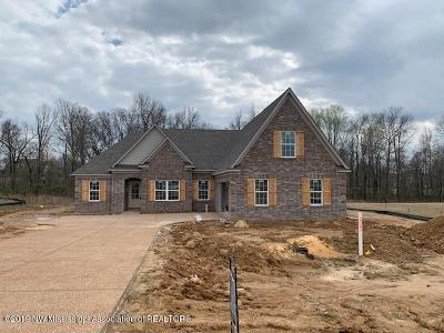 Desoto County Single Family Home For Sale: 2371 Christian Lane