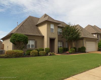 Desoto County Single Family Home For Sale: 2933 S Cherry Drive