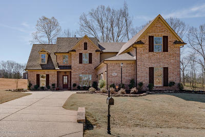 Desoto County Single Family Home For Sale: 7407 Gables Drive