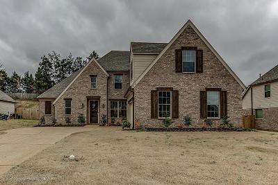 Desoto County Single Family Home For Sale: 8701 Oak Grove Boulevard