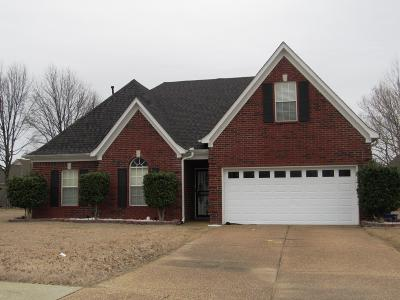 Desoto County Single Family Home For Sale: 9186 Tahoe Drive
