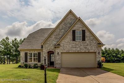 Desoto County Single Family Home For Sale: 3596 Sabra Lane