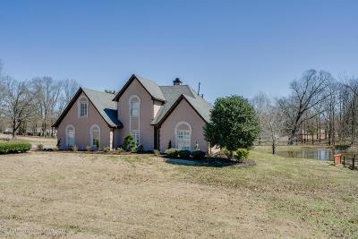 Desoto County Single Family Home For Sale: 5594 Shasta Lea Drive
