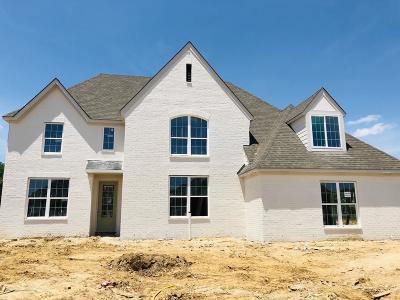 Desoto County Single Family Home For Sale: 4265 John Joseph Drive
