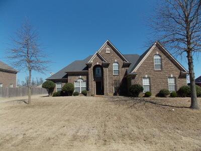 Desoto County Single Family Home For Sale: 4286 Davis Grove Boulevard