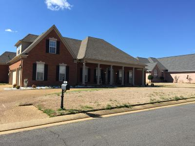 Desoto County Single Family Home For Sale: 4045 Upper Valley Cove