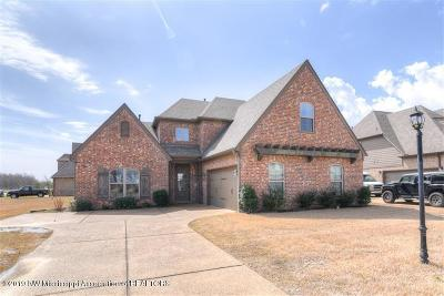 Desoto County Single Family Home For Sale: 13413 Lapstone Loop