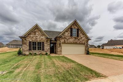 Desoto County Single Family Home For Sale: 3588 Sabra Lane