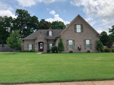Desoto County Single Family Home For Sale: 1962 Grand Manor Drive