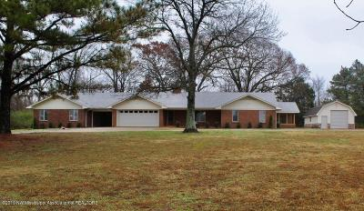 Desoto County Single Family Home For Sale: 4421 Stateline Road