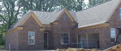 Desoto County Single Family Home For Sale: 4194 E Vineyard Drive
