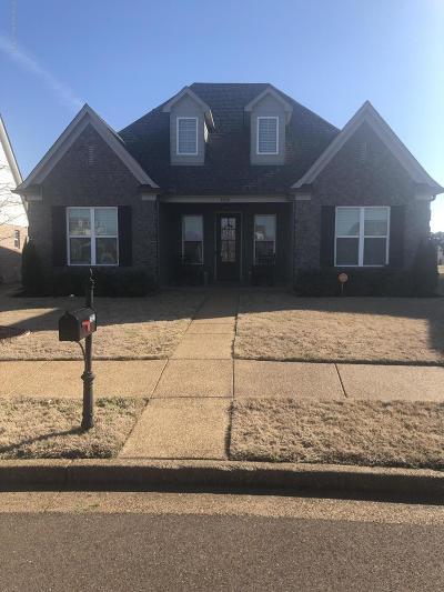 Olive Branch Single Family Home For Sale: 4690 Petite Loop