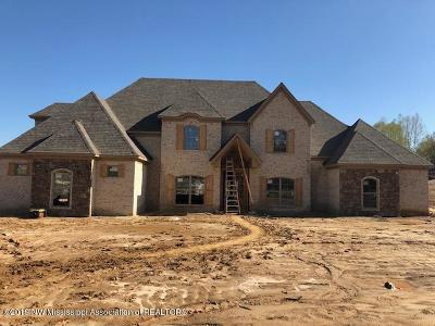 Desoto County Single Family Home For Sale: 7959 Holly Springs Road
