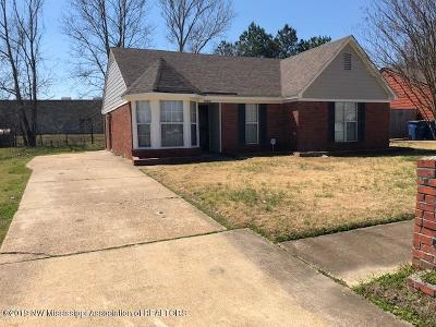 Olive Branch Single Family Home For Sale: 10403 Oak Leaf Drive