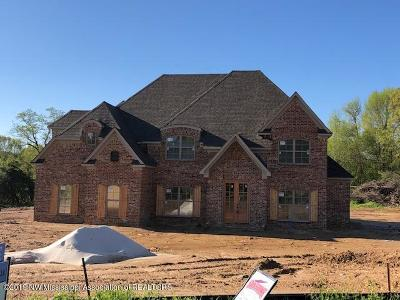 Hernando Single Family Home For Sale: 7977 Holly Springs Road