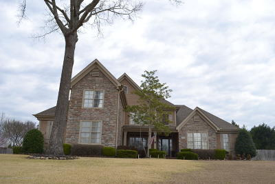 Desoto County Single Family Home For Sale: 2170 Hemingway Drive