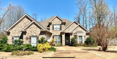 Desoto County Single Family Home For Sale: 778 Amanda Cove