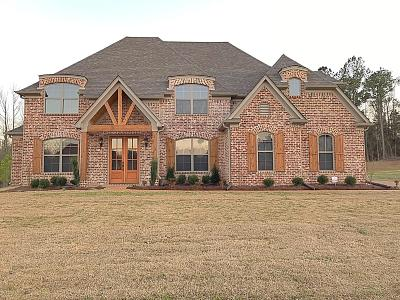 Olive Branch Single Family Home For Sale: 10307 Cypress Plantation Drive