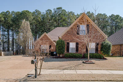 Southaven MS Single Family Home For Sale: $200,000