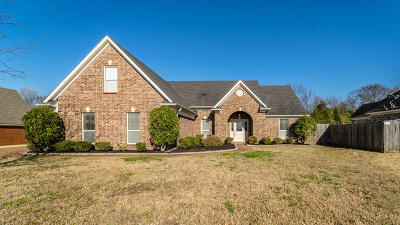 Southaven MS Single Family Home For Sale: $180,000