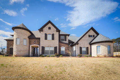 Olive Branch Single Family Home For Sale: 3355 Straw Bridge Road