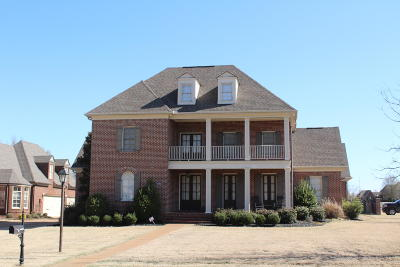 Olive Branch Single Family Home For Sale: 4050 Robinson Crossing