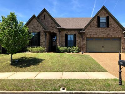 Olive Branch Single Family Home For Sale: 4259 Becky Sue Trail