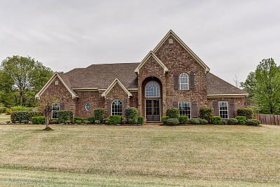 Desoto County Single Family Home For Sale: 2640 Elise Drive