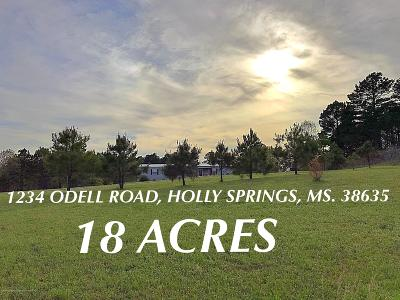 Holly Springs Single Family Home For Sale: 1234 Odell Road