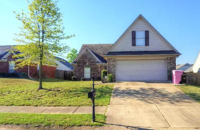 Southaven Single Family Home For Sale: 2745 Austin James Drive