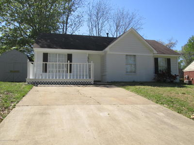 Olive Branch Single Family Home For Sale: 7065 Village Lane