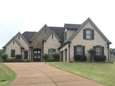 Olive Branch Single Family Home For Sale: 14201 Peach Tree Cove