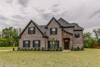 Olive Branch Single Family Home For Sale: 3354 Straw Bridge Road