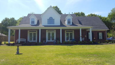 Olive Branch Single Family Home For Sale: 4535 Payne Parkway